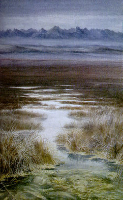 Alan Lee - The Passage of the Marshes.jpg