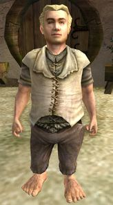 The Lord of the Rings Online - Saradoc Brandybuck.jpg