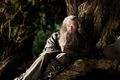 The Hobbit (film series) - Gandalf the Grey.jpg